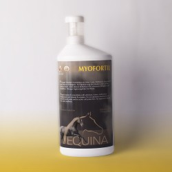 Equina Myofortil - suplement aminokwasowy na mięśnie - 1000ml