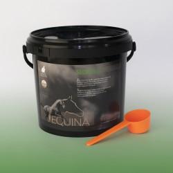Equina Secrolin - układ oddechowy i odporność, suplement ziołowy - 800g