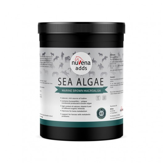 NuVena - Sea Algae 350g (Ascophyllum nodosum) - Algi dla koni